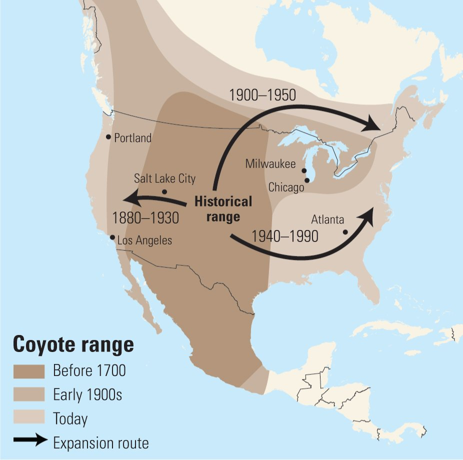 map of usa with cities and states with A Coyote Tale on Mesa Verde National Park together with Germany besides Usa Cities Map likewise Anaheim likewise Outline Map.