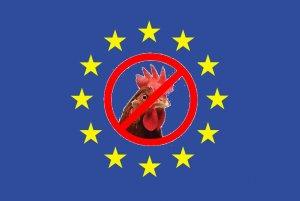 EUFlagChicken